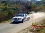 VIII Rallye de Ourense Baixa-Limia 2011
